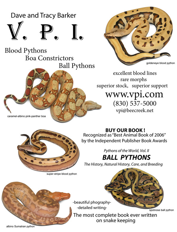 "WELCOME TO VPI!!! ""VPI:Passing on information to the next generation"""